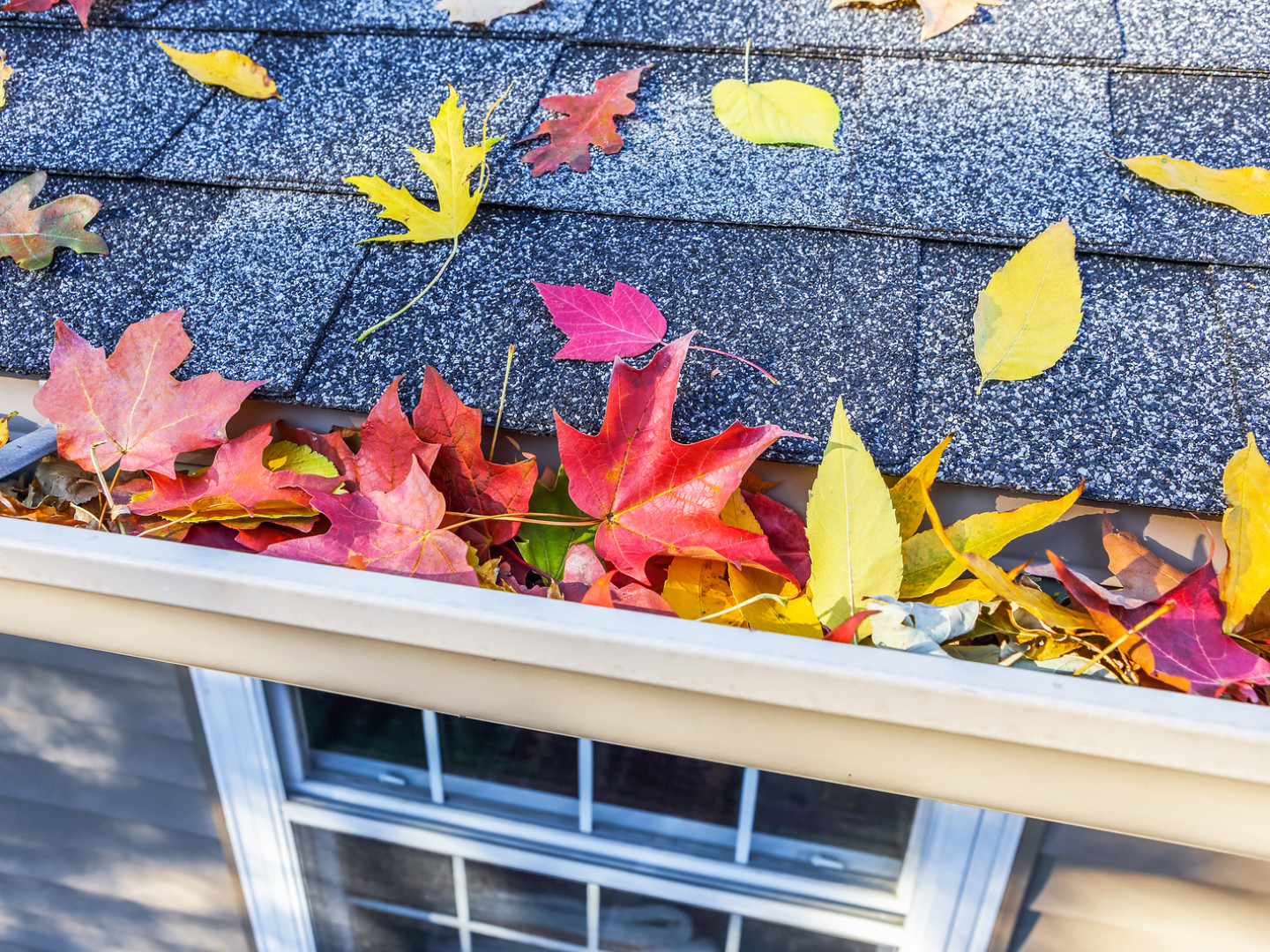 gutter cleaning services Battle Creek and Kalamazoo, MI